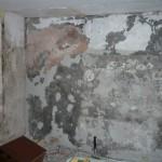 Damp wall 2