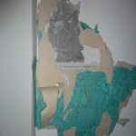 The attractive layers of woodchip and 70s wallpaper.