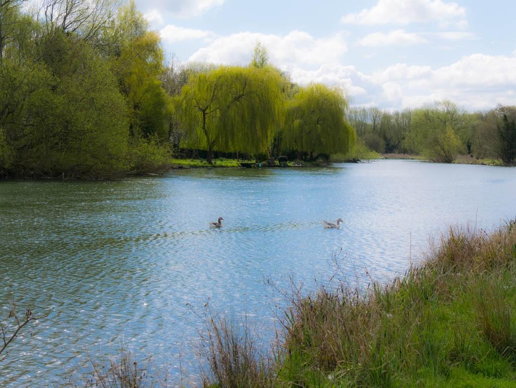 River Thames near Oxford