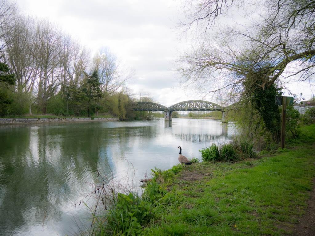 The Thames Path near Kennington, Oxfordshire