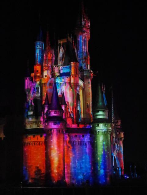 Magic Kingdom light show