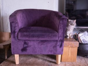 Purple chenille tub chair