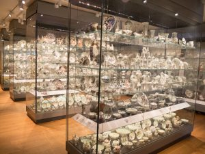 Ashmolean museum collections
