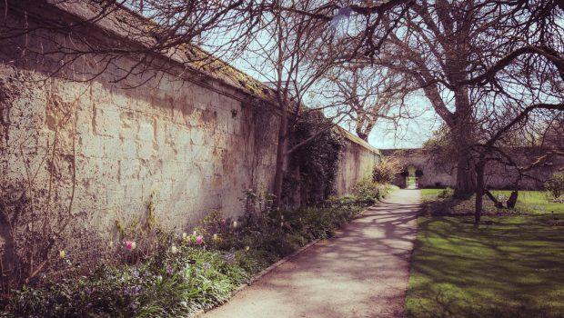 Oxford blog
