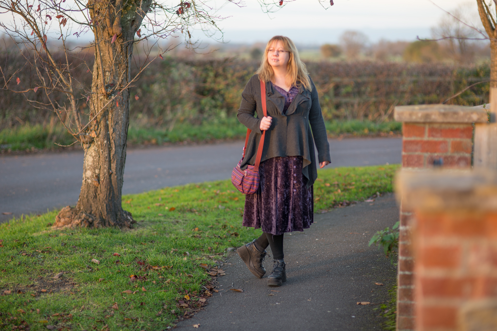 Weekly Wardrobe – a vintage velvet dress