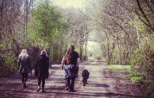 Walking round Glastonbury Festival site
