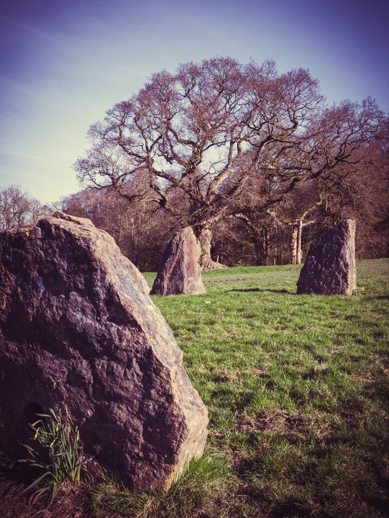 Stone Circle at Glastonbury