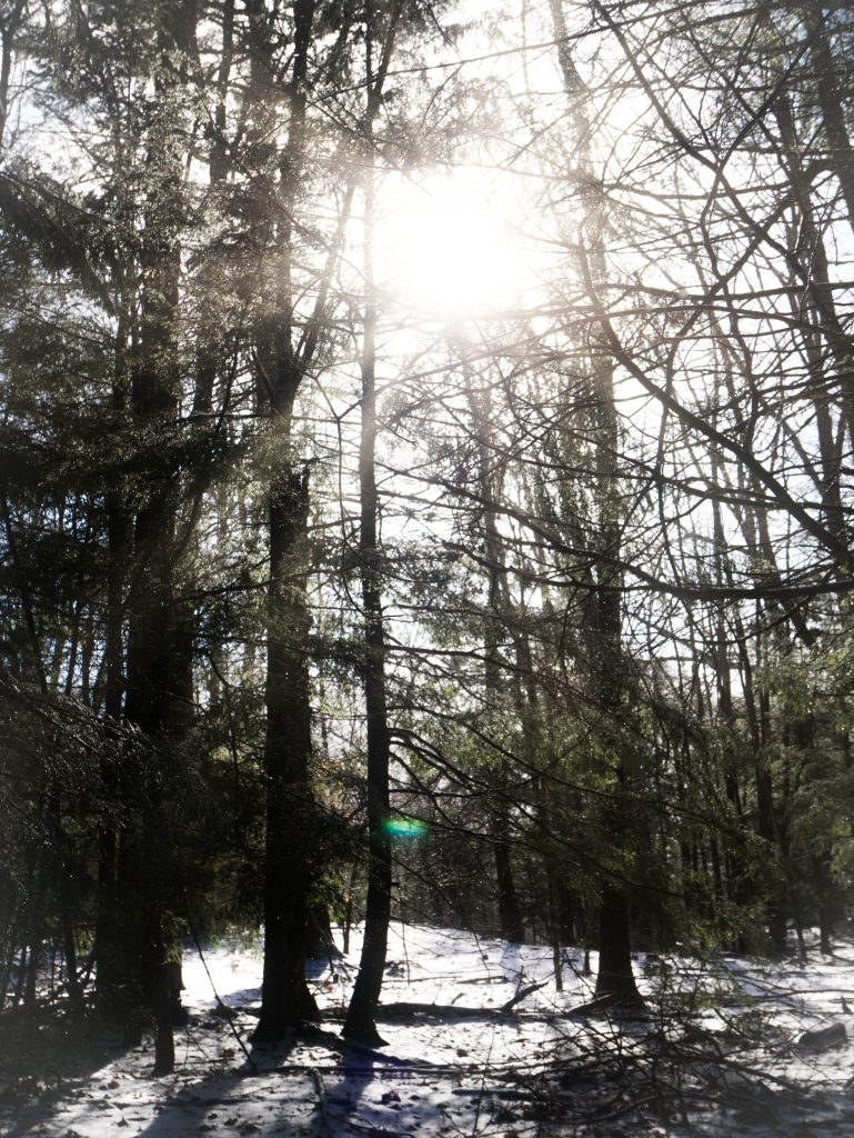 Kaatskill Mountain in winter