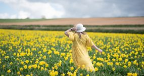 4 reasons why this is the perfect summer dress! A yellow dress from Marks and Spencer