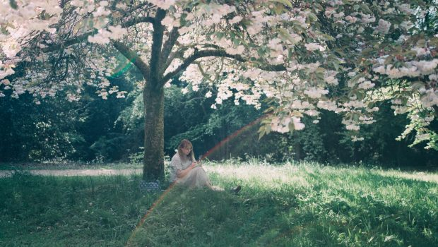 british blogger sitting on the grass under a blossom tree