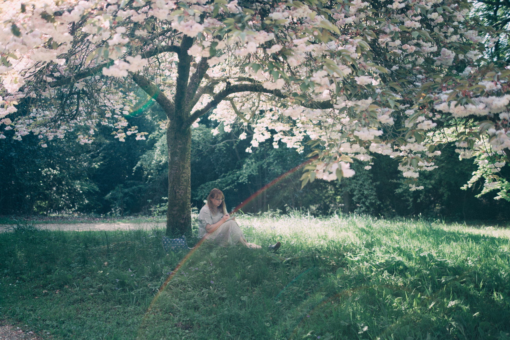 british blogger sitting on the grass under a blossom tree