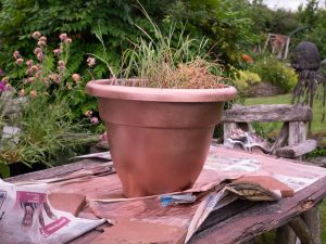 Copper plant pot for patio