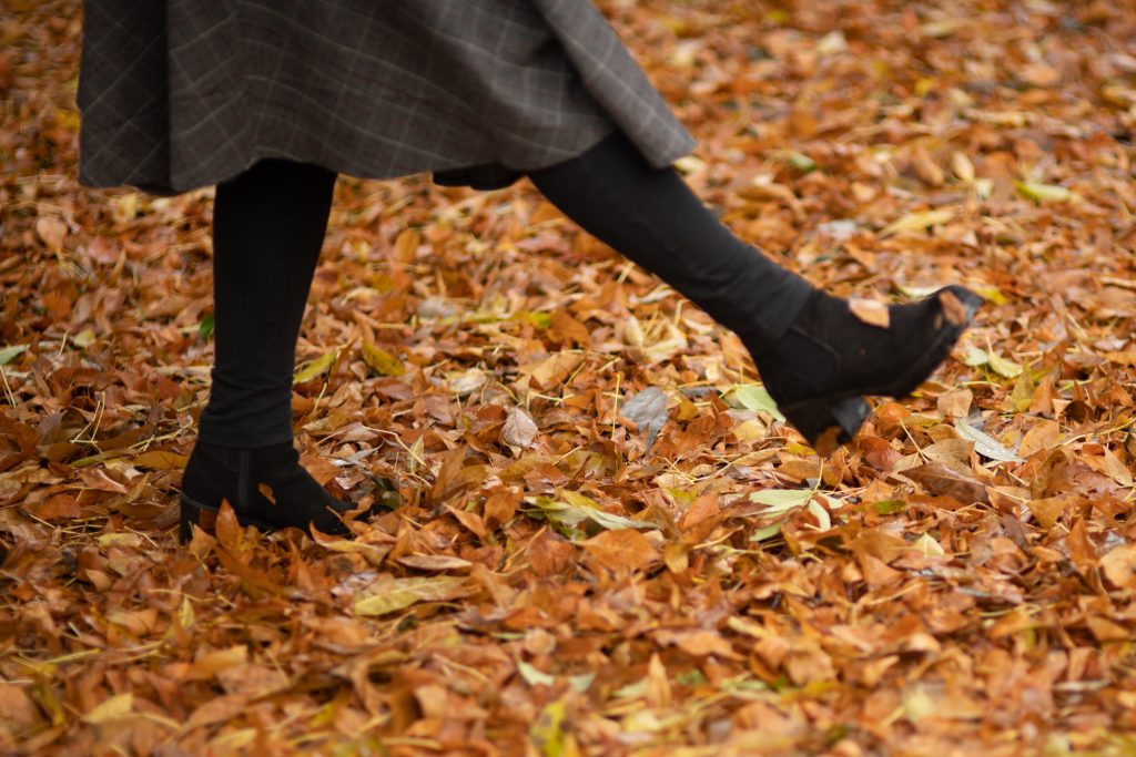 kicking autumn leaves at Boston Common
