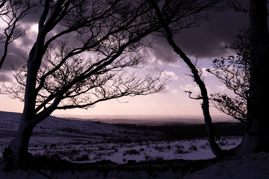 Dartmoor in the snow