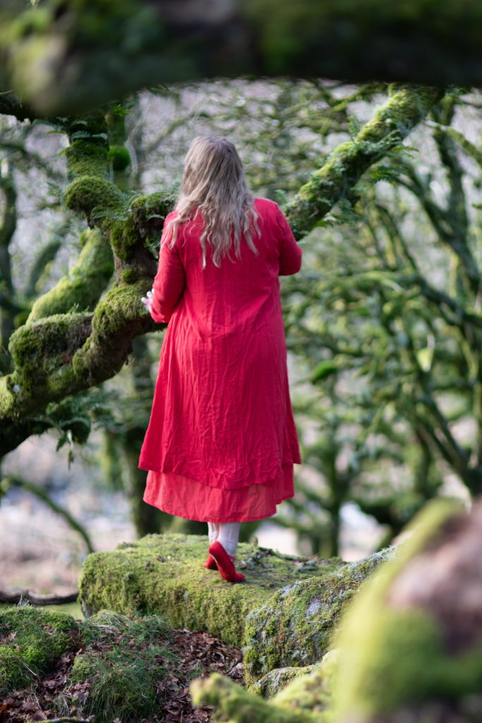 Long-sleeved red maxi dress