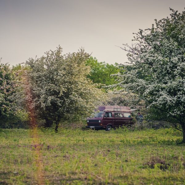 VW campervan road trip