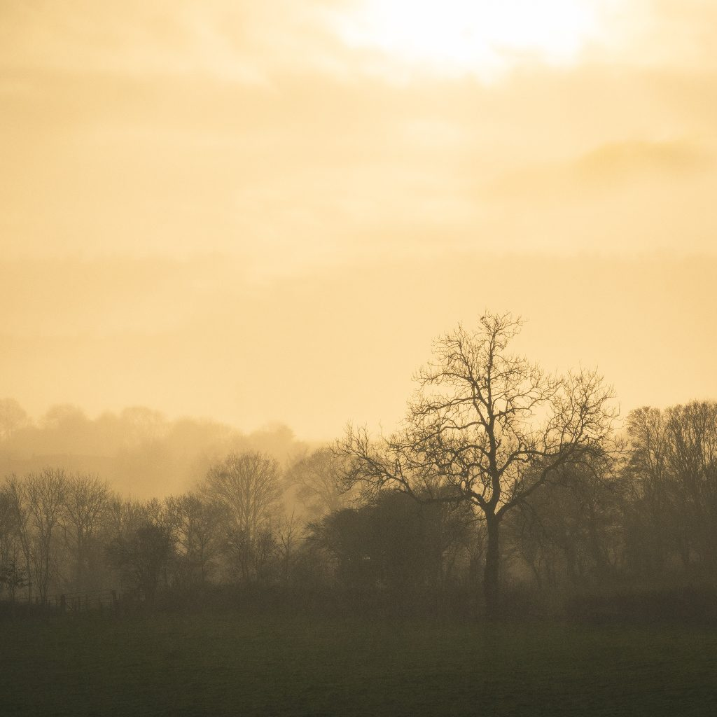 Pilton, Somerset