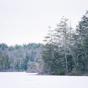 Frozen Burr pond